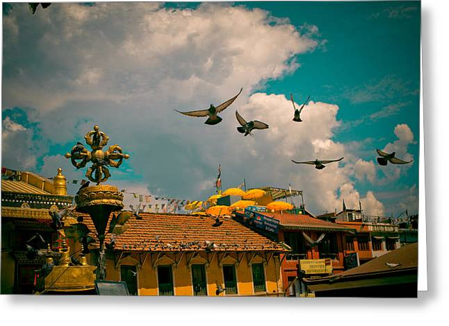 Greeting Card featuring the photograph Pigeons Near Monastery In Boudnath Kathmandu by Raimond Klavins