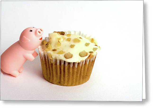 Piggy And The Cupcake Greeting Card