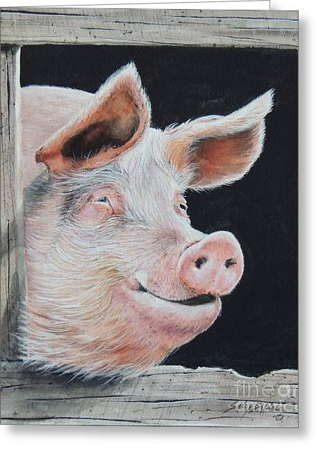 Piggy.  Sold  Greeting Card