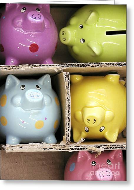 Pigs In A Box Greeting Card