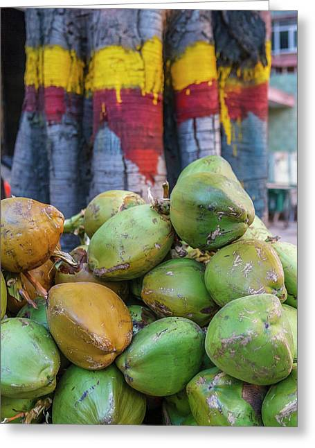 Pile Of Coconuts, Bangalore, India Greeting Card by Ali Kabas