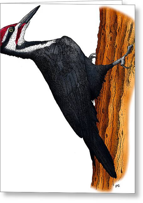 Pileated Woodpecker Greeting Card by Roger Hall