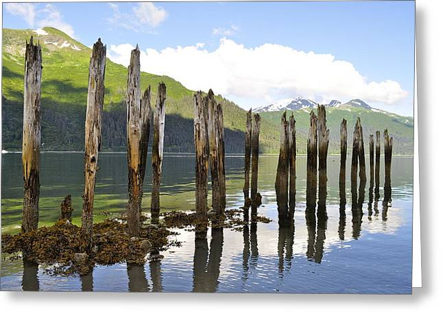 Greeting Card featuring the photograph Pilings by Cathy Mahnke