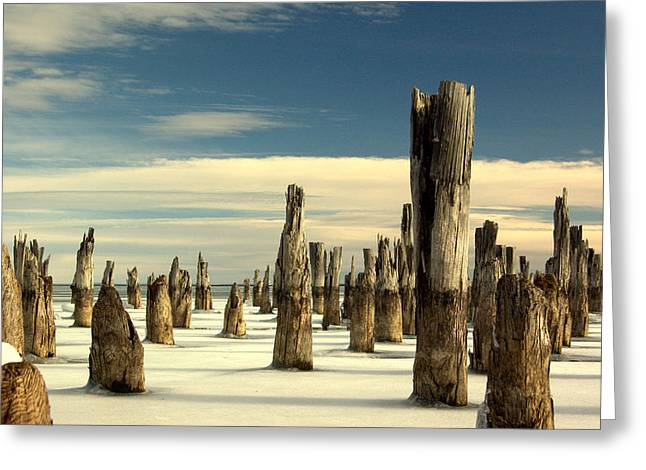 pilings II Greeting Card