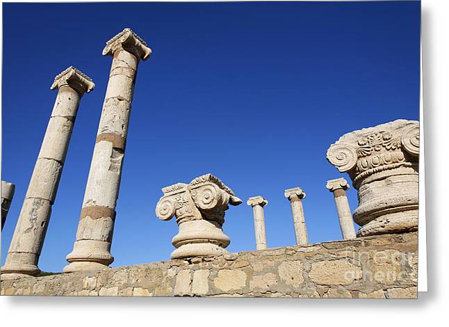 Pillars At The Old Forum At Leptis Magna In Libya Greeting Card by Robert Preston