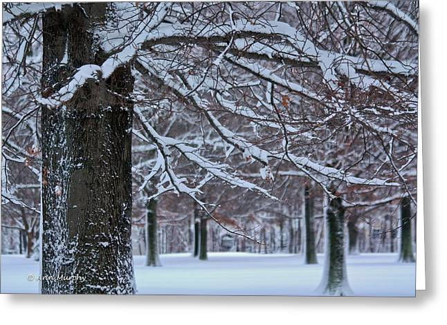 Greeting Card featuring the photograph Pin Oak Snow by Ann Murphy