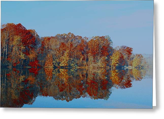 Pinchot 4 Greeting Card
