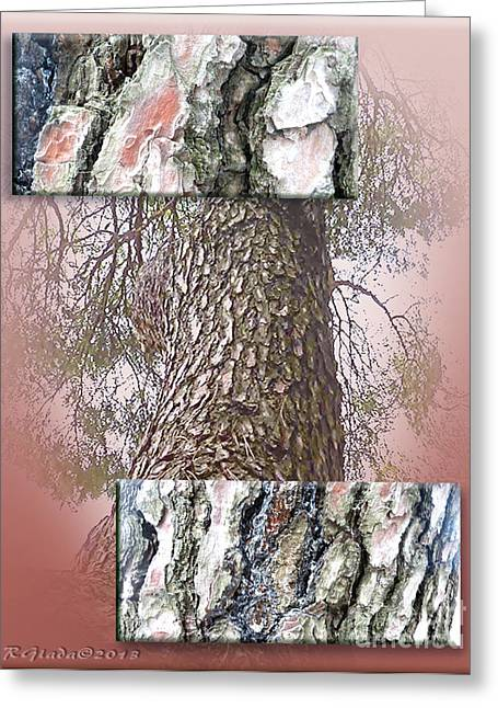 Pine Bark Study 1 - Photograph By Giada Rossi Greeting Card