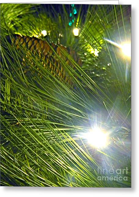 Greeting Card featuring the photograph Pine Cone With Lights by Utopia Concepts
