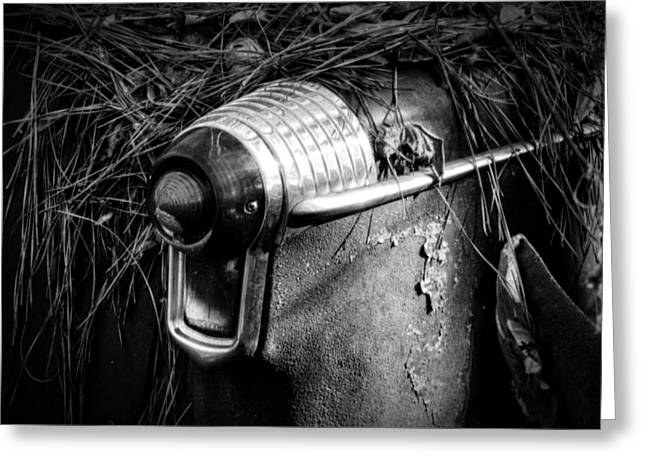 Pine Needles On Tail Light In Black And White Greeting Card by Greg Mimbs