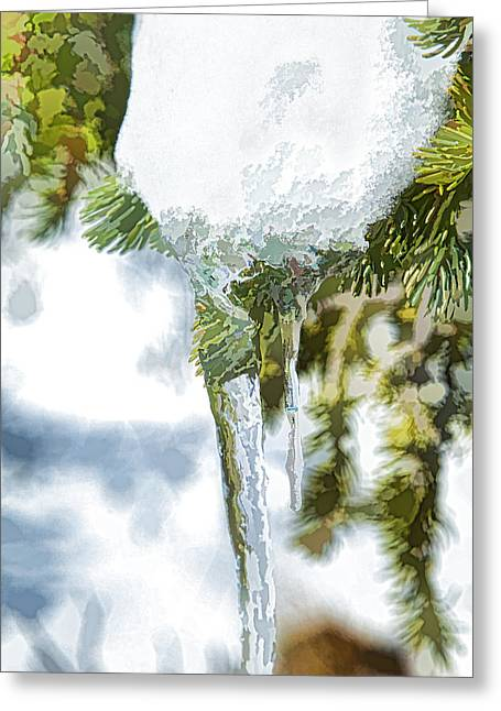 Pine Snow And Ice Greeting Card