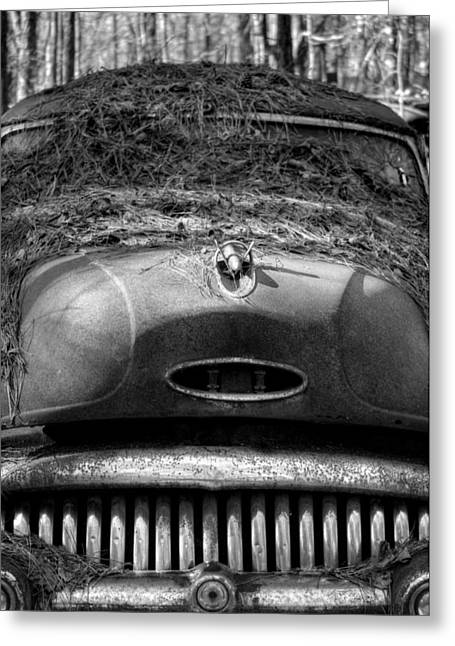Pine Straw On Buick In Black And White Greeting Card by Greg Mimbs