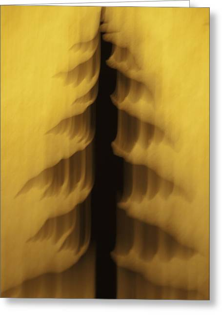 Greeting Card featuring the photograph Pine Tree Abstract 2 by Sherri Meyer