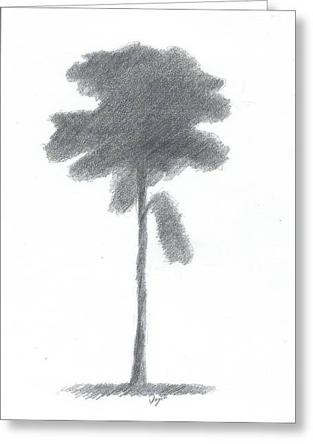 Pine Tree Drawing Number Three Greeting Card by Alan Daysh