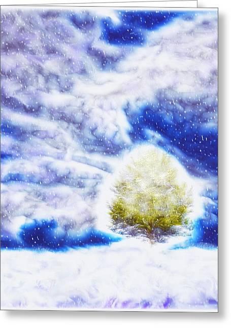 Pine Tree In Winter Greeting Card