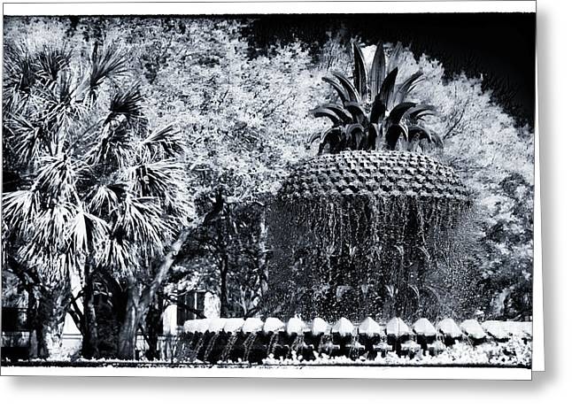 Pineapple In Charleston Greeting Card by John Rizzuto