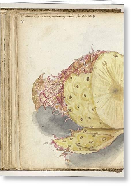 Pineapple, Jan Brandes Greeting Card