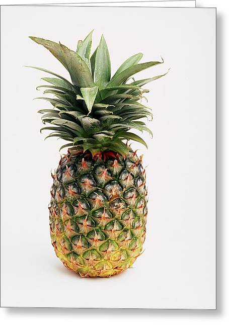 Pineapple Greeting Card by Ron Nickel