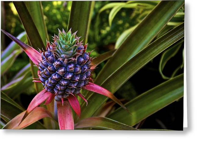 Pineapple Royal Greeting Card