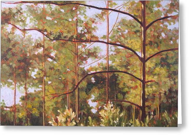 Pines Greeting Card by Carlynne Hershberger