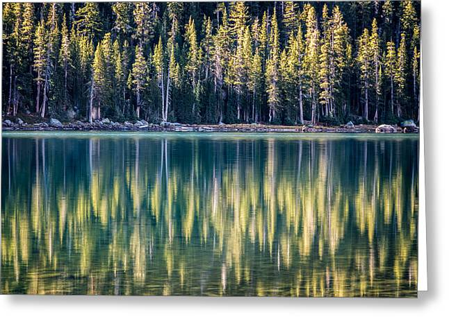 Pines Reflected In Tenaya Lake Greeting Card