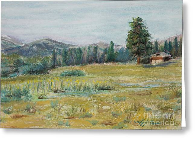 Pingree Park Greeting Card by Mary Benke
