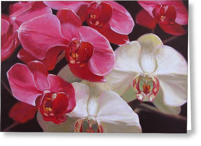 Pink And White Orchids Greeting Card by Takayuki Harada