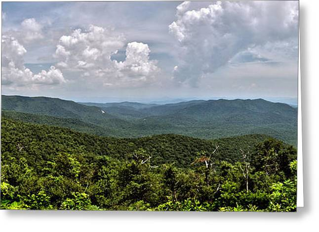 Greeting Card featuring the photograph Pink Bed On Blue Ridge Parkway by Allen Carroll