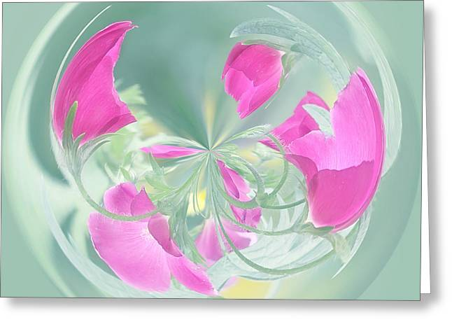Pink California Poppy Orb Greeting Card by Kim Hojnacki
