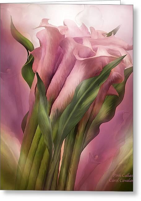 Pink Callas Greeting Card by Carol Cavalaris