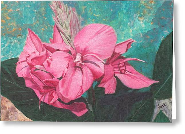Pink Canna Greeting Card by Hilda and Jose Garrancho