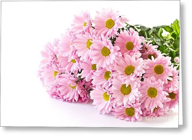 Pink Chrysanthemum Prints Greeting Card