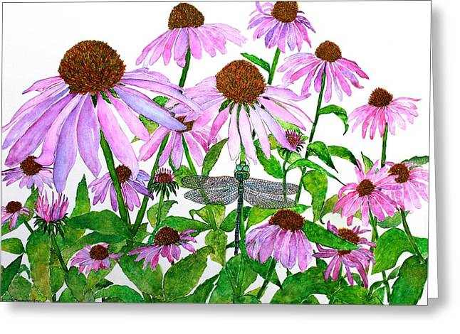 Pink Cone Flowers And Dragonfly Greeting Card