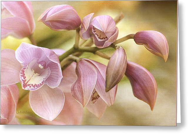 Pink Cymbidium Orchids Greeting Card by Julie Palencia