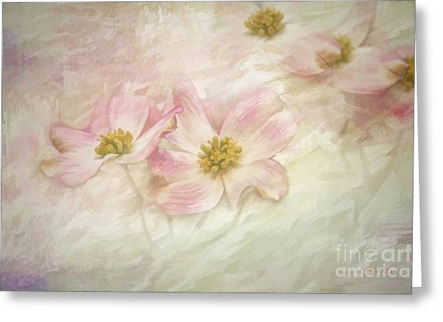 Pink Dogwood Greeting Card by Linda Blair