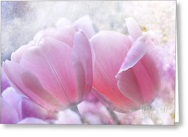 Pink  Greeting Card by Elaine Manley