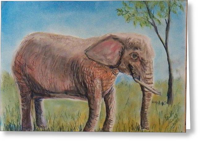 Pink Elephant Greeting Card by Richard Goohs