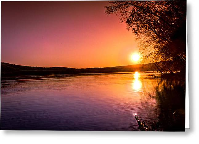 Pink Evening Greeting Card by Jahred Allen