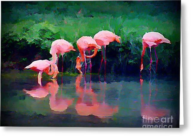 Pink Flamingos Greeting Card by John Malone