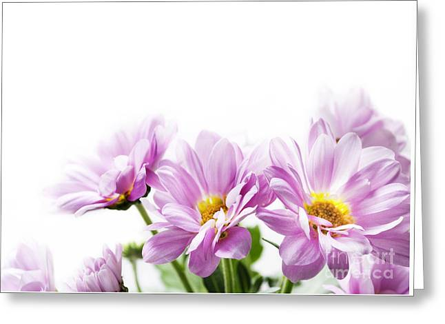 Pink Flowers Greeting Card by Jelena Jovanovic