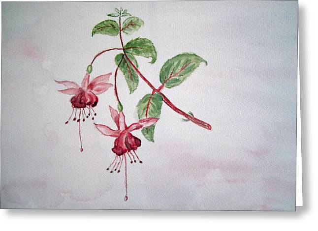 Pink Fuchsia's  Greeting Card