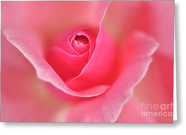 Pink Glow Greeting Card by Kaye Menner