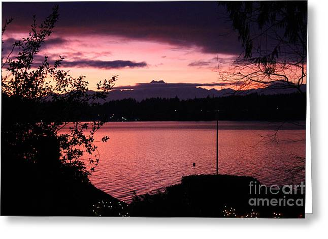 Pink Grapefruit Colored Sunset Greeting Card by Kym Backland