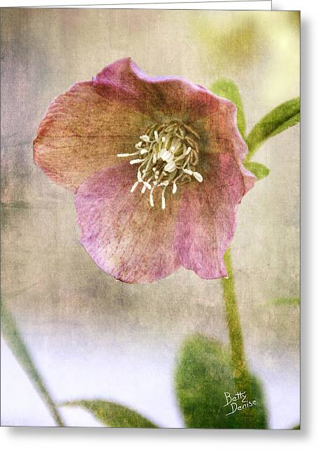 Greeting Card featuring the photograph Pink Hellebore by Betty Denise