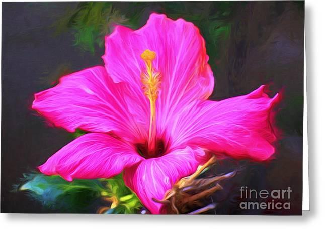 Pink Hibiscus Digital Painting In Oil Greeting Card