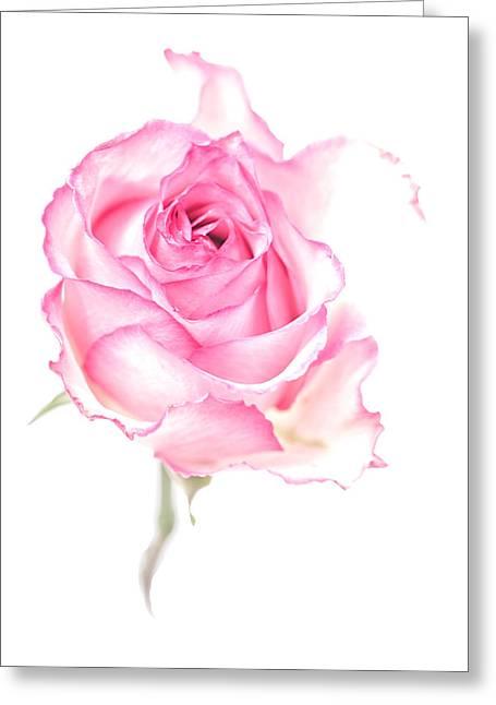 Pink Impression Greeting Card