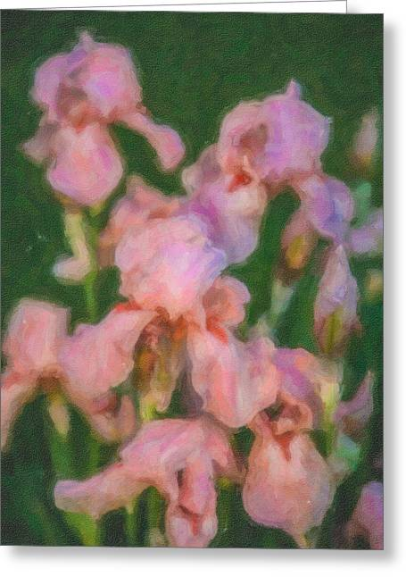 Pink Iris Family Greeting Card by Omaste Witkowski