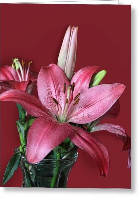 Pink Lily In Rose Greeting Card by Linda Phelps