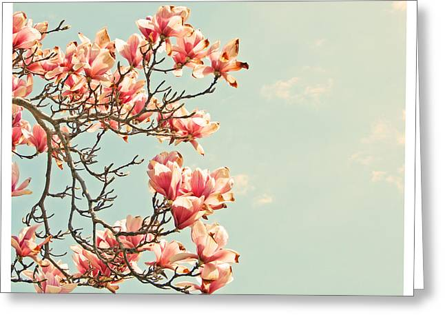 Pink Magnolia Flowers Against Blue Sky Greeting Card by Brooke T Ryan