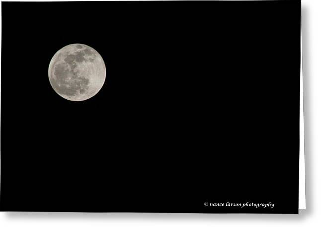 Pink Moon Greeting Card by Nance Larson